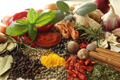 Herbs and spices. Selection. Aromatic ingredients and natural food additives stock image