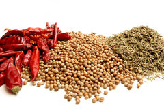 Herbs and spices. Dried red chili peppers, coriander, and thyme. closeup over white royalty free stock photos
