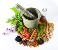 Herbs and spices. With mortar and bottle with oil royalty free stock photography