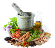 Herbs and spices. With mortar and bottle with oil stock photography