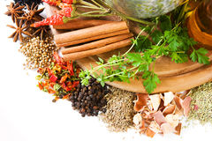 Herbs and spices. Different fresh herbs and spices on board stock image