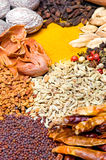 Herbs and spices. Composition with different herbs and spices such as cumin, nutmeg, pepper, mustard seeds, fennel, cardamom and saffron powder Royalty Free Stock Photography