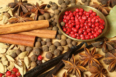 Herbs and spices Stock Images