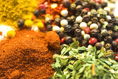 Herbs and spices. Dried herbs and spices stock photography
