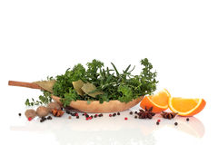 Free Herbs, Spices And Orange Fruit Royalty Free Stock Photos - 11869818