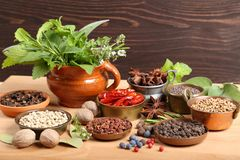 Herbs and spices. Stock Photos