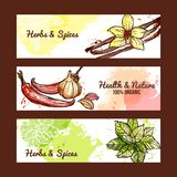 Herbs And Spices Banners Royalty Free Stock Photos