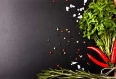 Herbs and spices. basil, red pepper, salt and rosemary on a blac Stock Photography