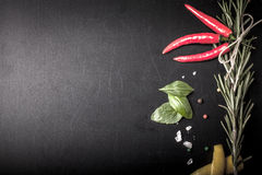 Herbs and spices. basil, red pepper, salt and rosemary on a blac Royalty Free Stock Photo