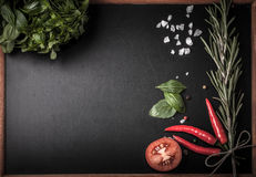 Herbs and spices. basil, red pepper, salt and rosemary on a blac Stock Image