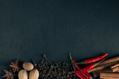 Herbs and spices on black background with space for text. Stock Image