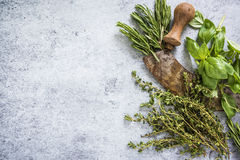Herbs and spices border background. Flat lay from above Stock Image