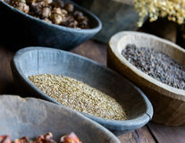 Herbs and spices in bowls. Used in ayurvedic medicine royalty free stock photo