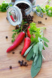 Herbs and spices with chilies Stock Image