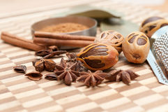 Herbs and spices. A close up look at some popular herbs and spices Royalty Free Stock Photo