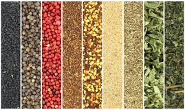 Herbs and spices collage Royalty Free Stock Images