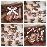 Herbs and Spices Collection - Cinnamon and Clove Stock Photo