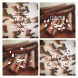 Herbs and Spices Collection - Cinnamon and Clove Stock Images