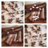 Herbs and Spices Collection - Cinnamon and Clove Royalty Free Stock Photography