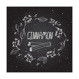 Herbs and Spices Collection - Cinnamon Stock Image