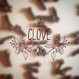 Herbs and Spices Collection - Clove Stock Images