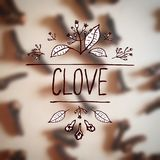 Herbs and Spices Collection - Clove Stock Photo