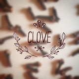 Herbs and Spices Collection - Clove Stock Photography
