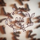 Herbs and Spices Collection - Clove Stock Photos