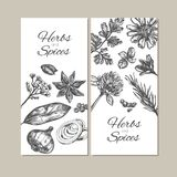 Herbs and spices collection. Vector hand drawn banners.  objects Stock Photo
