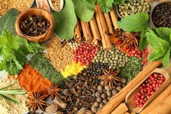 Herbs and spices. Colorful and aromatic spices and herbs. Food additives Royalty Free Stock Photos