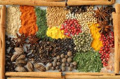 Herbs and spices. Royalty Free Stock Image