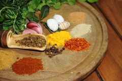 Herbs spices and condiments. Aromatic herbs from the organic garden and spices for cooking Royalty Free Stock Photos