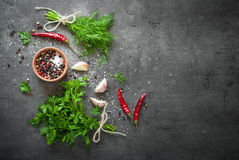 Herbs and spices at dark table. Herbs and spices at dark slate table. Parsley, dill, garlic and pepper. Ingredients for cooking Royalty Free Stock Image