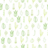 Herbs and spices doodle hand drawn pattern Stock Images