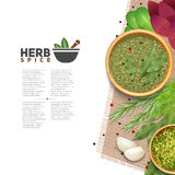 Herbs Spices Food Seasoning Information POster Royalty Free Stock Image