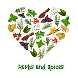 Herbs and spices heart vector poster Royalty Free Stock Photos
