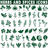 Herbs and spices icons. On a white background with a shadow Royalty Free Stock Images