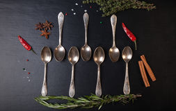Herbs and spices with old metal spoons on a black background Stock Photos