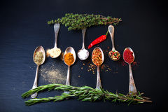 Herbs and spices with old metal spoons on a black background. To Royalty Free Stock Image