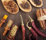 Herbs and Spices over wooden background.  Royalty Free Stock Photos
