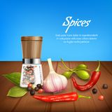 Herbs And Spices Realistic Background. Realistic background with herbs and spices such as garlic pepper olives chili bay leaf peppercorn vector illustration Royalty Free Stock Photos