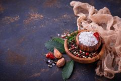Herbs and spices on rusty background. Herbs and spices. Culinary background Royalty Free Stock Photo