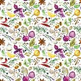 Herbs and spices seamless pattern. watercolor botanical illustration Vector Illustration