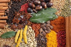 Herbs and spices. Royalty Free Stock Images