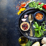 Herbs and spices selection Royalty Free Stock Photo