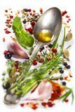 Herbs and spices selection Royalty Free Stock Photos