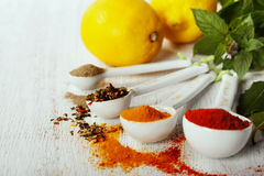 Herbs and spices selection, close up Royalty Free Stock Photo