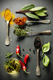 Herbs and spices selection Stock Image