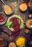 Herbs and spices selection with staghorn sumac powder on dark rustic wooden background Stock Photography