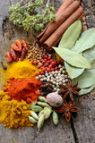 Herbs and spices selection Royalty Free Stock Images